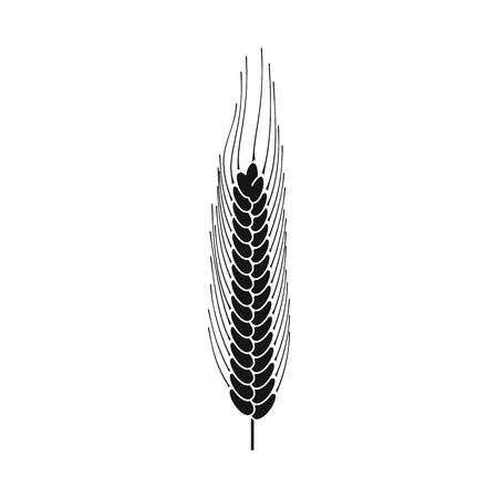 Vector illustration of wheat and corn sign. Collection of wheat and harvest stock symbol for web. Ilustração