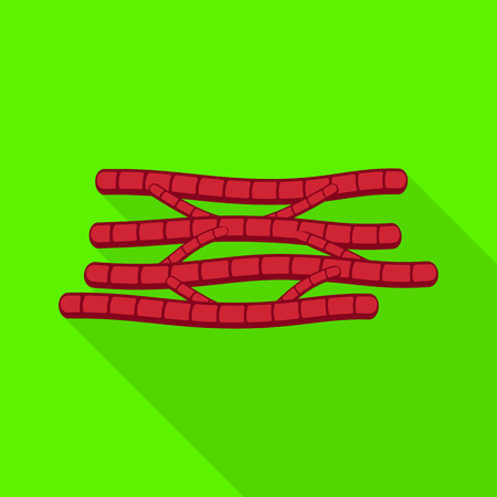 Vector design of muscle and cells icon. Set of muscle and anatomy stock symbol for web.