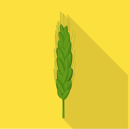 Isolated object of wheat and corn symbol. Set of wheat and harvest stock symbol for web. 向量圖像
