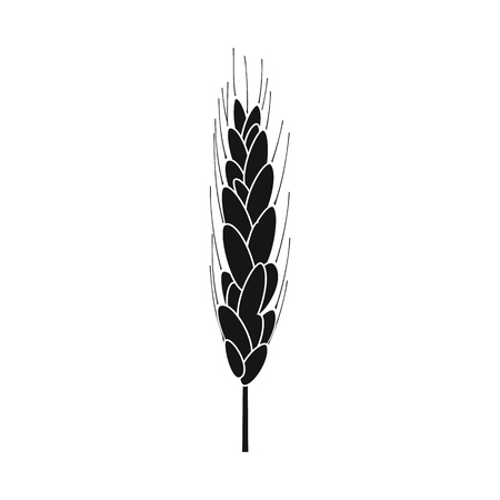 Isolated object of wheat and corn symbol. Collection of wheat and harvest stock symbol for web.