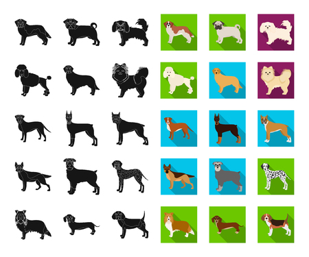 Dog breeds black,flat icons in set collection for design.Dog pet vector symbol stock web illustration.