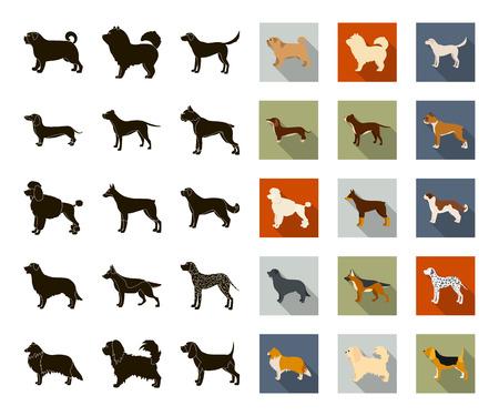 Dog breeds black,flat icons in set collection for design.Dog pet vector symbol stock web illustration.