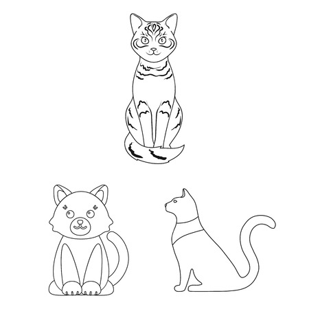 Vector design of pet and sphynx symbol. Set of pet and fun stock vector illustration.