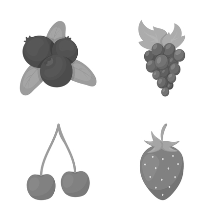 Vector illustration of berry and fruit icon. Set of berry and redberry  vector icon for stock.