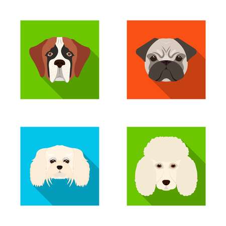 Vector design of cute and puppy sign. Collection of cute and animal vector icon for stock.