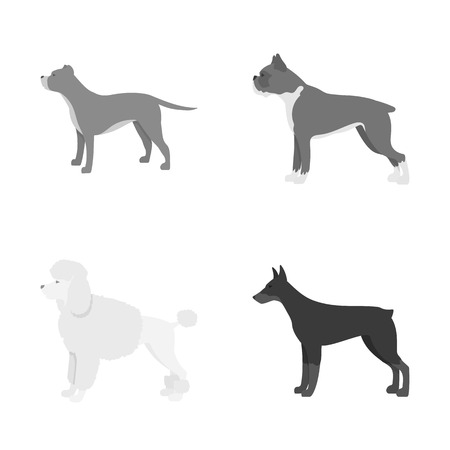 Isolated object of cute and puppy symbol. Set of cute and animal vector icon for stock. Illustration