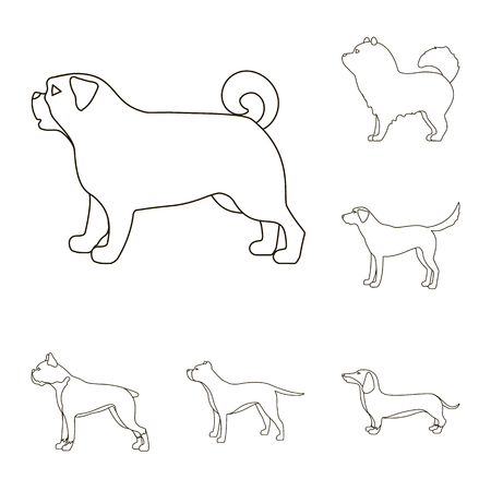 Vector design of cute and puppy sign. Set of cute and animal stock vector illustration.