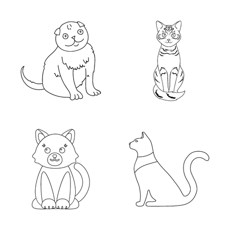 Vector design of pet and sphynx logo. Collection of pet and fun stock vector illustration.