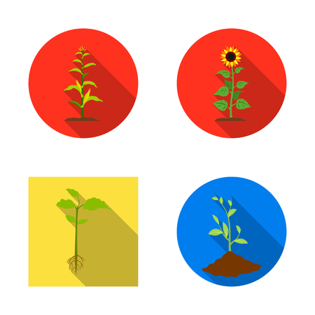 Vector illustration of plant and bean icon. Collection of plant and process stock symbol for web. Vectores