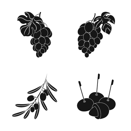 Isolated object of berry and fruit icon. Collection of berry and redberry  vector icon for stock.