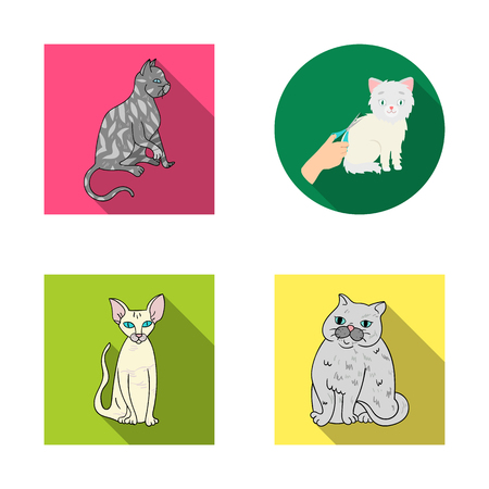Isolated object of pet and sphynx logo. Set of pet and fun stock vector illustration. Ilustração