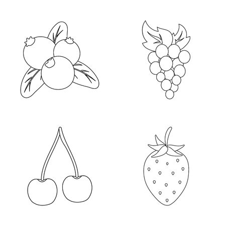 Isolated object of berry and fruit logo. Collection of berry and redberry  stock vector illustration. Vettoriali