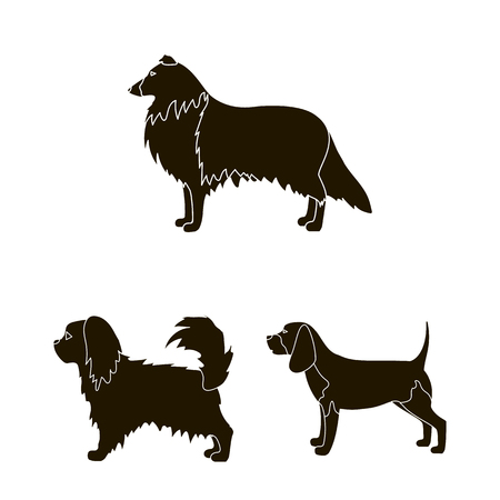 Vector design of cute and puppy . Set of cute and animal stock vector illustration. 일러스트