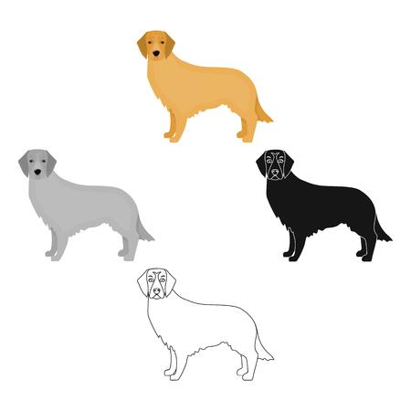 Retriever single icon in cartoon style.Retriever vector symbol stock illustration web.