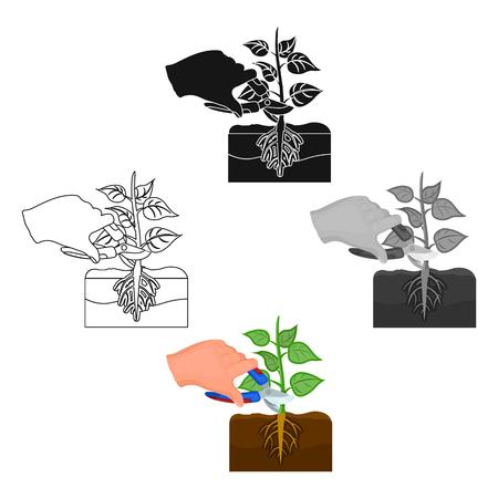 Plants, single icon in cartoon style .Plants, vector symbol stock illustration web. Ilustracja