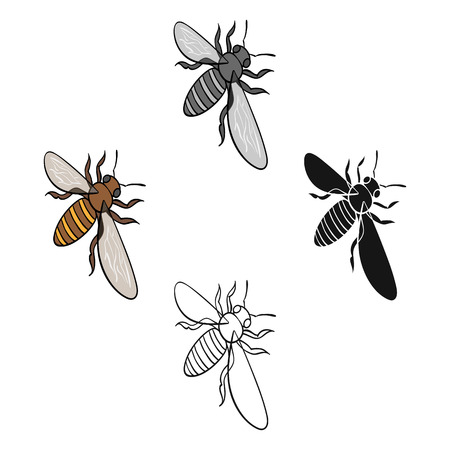 A bee, a hymenopteran insect. Stinging insect bee single icon in cartoon style vector symbol stock isometric illustration web. Illustration