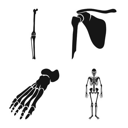 Vector illustration of biology and medical icon. Set of biology and skeleton vector icon for stock. Illustration