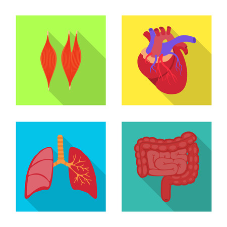 Vector illustration of human and health icon. Collection of human and scientific stock vector illustration.