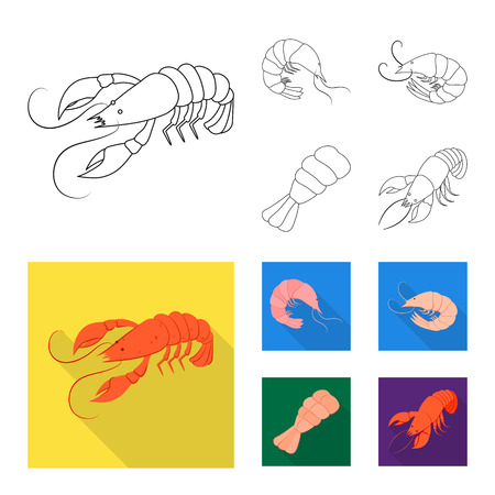 Vector design of appetizer and ocean icon. Collection of appetizer and delicacy stock vector illustration. Illustration