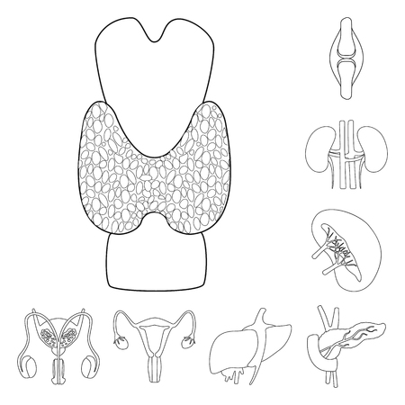 Vector illustration of anatomy and organ icon. Set of anatomy and medical stock vector illustration.  イラスト・ベクター素材