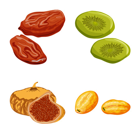 Vector design of fruit and dried  sign. Set of fruit and food  stock symbol for web.