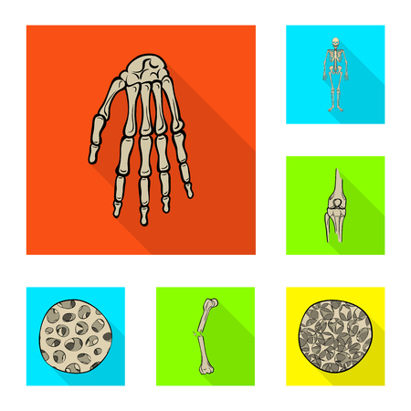 Vector illustration of bone and skeleton icon. Set of bone and human stock symbol for web.