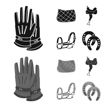 Vector illustration of equipment and riding symbol. Set of equipment and competition vector icon for stock.