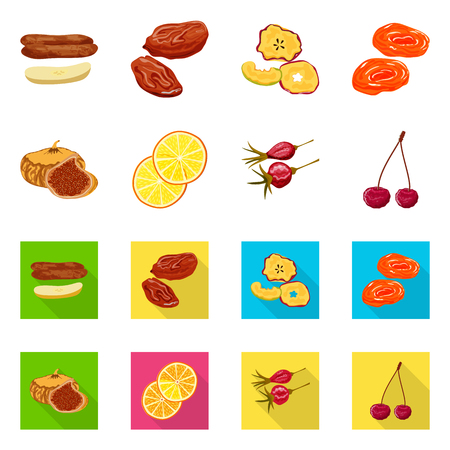 Vector illustration of food and raw icon. Set of food and nature stock vector illustration.