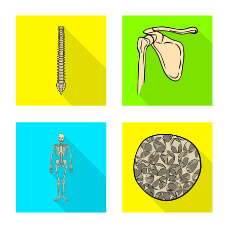 Isolated object of bone and skeleton sign. Set of bone and human stock symbol for web.