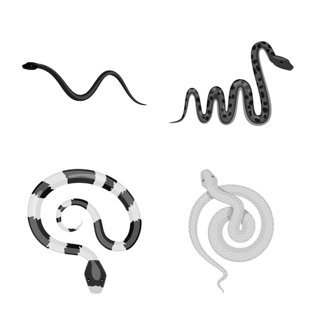 Isolated object of harm and bite sign. Collection of harm and reptile vector icon for stock. Illustration