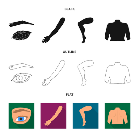 Isolated object of body and part sign. Set of body and anatomy stock symbol for web.