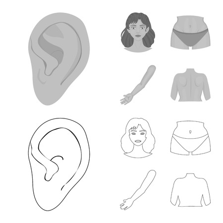 Isolated object of body and part symbol. Collection of body and anatomy stock vector illustration.