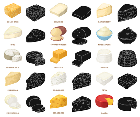 Different kind of cheese cartoon,black icons in set collection for design.Milk product cheese vector symbol stock web illustration.  イラスト・ベクター素材