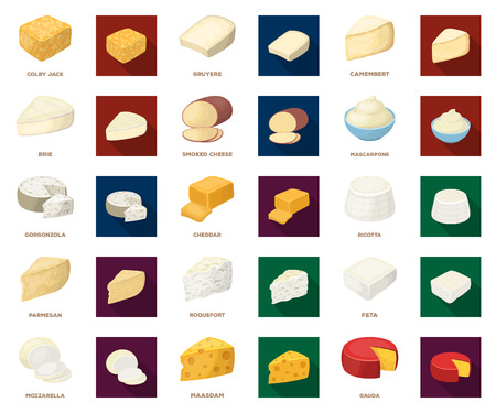 Different kind of cheese cartoon,flat icons in set collection for design.Milk product cheese vector symbol stock web illustration.