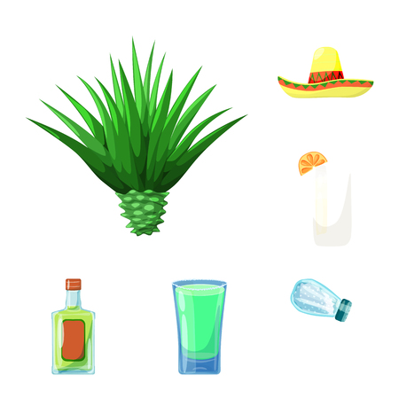 Vector illustration of Mexico and tequila icon. Set of Mexico and fiesta stock vector illustration.  イラスト・ベクター素材