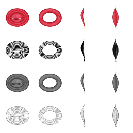 Vector illustration of fiber and muscular symbol. Set of fiber and body  vector icon for stock.