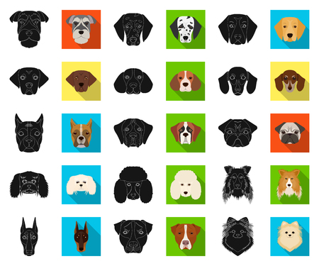 Dog breeds black,flat icons in set collection for design.Muzzle of a dog vector symbol stock web illustration.