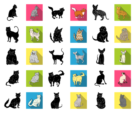 Breeds of cats black,flat icons in set collection for design. Pet cat vector symbol stock web illustration. Stock Illustratie