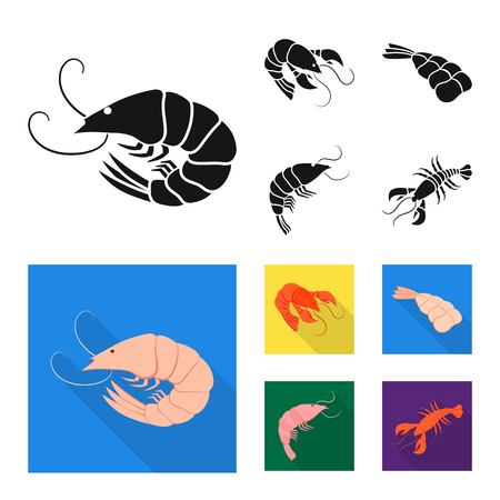Vector design of appetizer and ocean icon. Collection of appetizer and delicacy stock vector illustration.