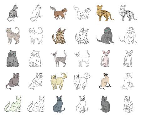 Razas de gatos, dibujos animados, iconos de contorno de colección set de diseño. Ejemplo del web de la acción del símbolo del vector del gato del animal doméstico.