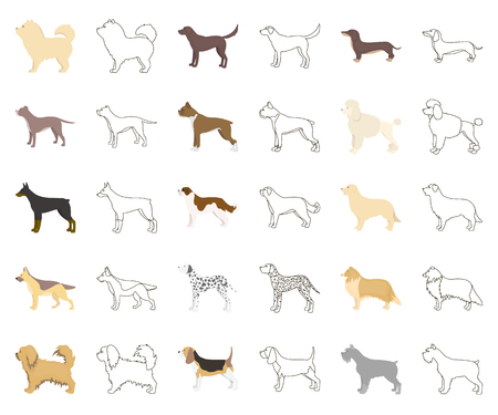 Dog breeds cartoon,outline icons in set collection for design.Dog pet vector symbol stock web illustration.