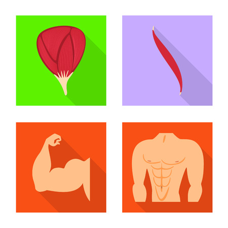 Vector design of muscle and cells sign. Set of muscle and anatomy stock symbol for web. Illustration