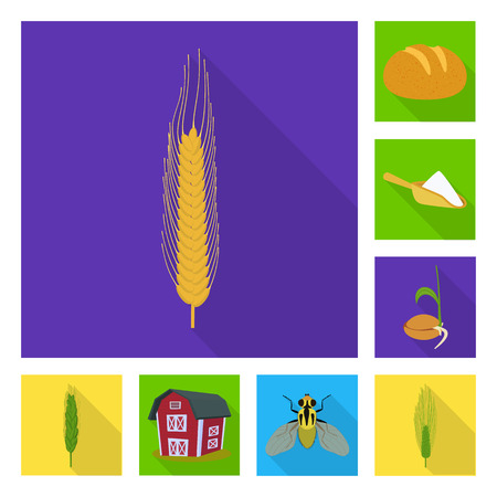 Isolated object of wheat and corn sign. Set of wheat and harvest stock symbol for web.