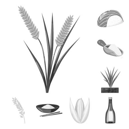 Isolated object of food and organic sign. Set of food and agricultural vector icon for stock.
