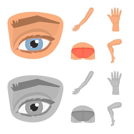 Illustration vectorielle du logo du corps et de la partie. Ensemble d'illustration vectorielle stock corps et anatomie.