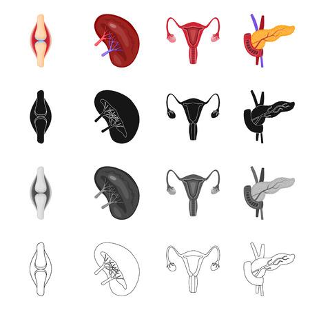 Vektordesign der Biologie und des wissenschaftlichen Symbols. Sammlung von Vektorsymbolen für Biologie und Labor für Lager.