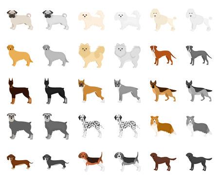 Dog breeds cartoon,monochrom icons in set collection for design.Dog pet vector symbol stock web illustration. Illustration