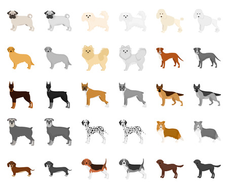Dog breeds cartoon,monochrom icons in set collection for design.Dog pet vector symbol stock web illustration. Illustration