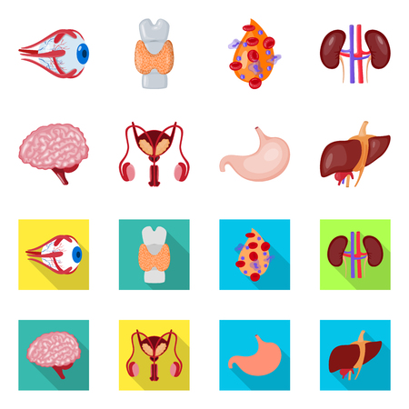 Vector illustration of biology and scientific icon. Collection of biology and laboratory stock vector illustration. Illustration