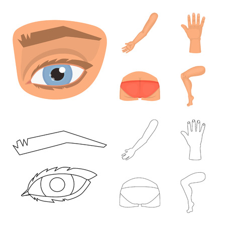 Isolated object of body and part sign. Set of body and anatomy vector icon for stock. Ilustração